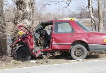prometna nesreća cirkovljan