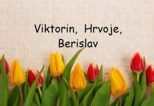viktorin, hrvoje, berislav