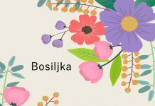 Bosiljka