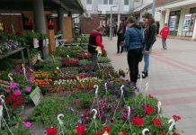 cvjetna tržnica 1