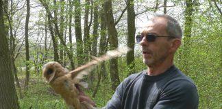 puštanje ptica