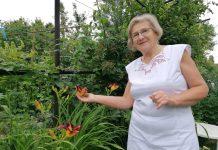 Ivanka Bene kandidatkinja nagradnog natječaja Međimurskih novina Čiji je vrt najljepši